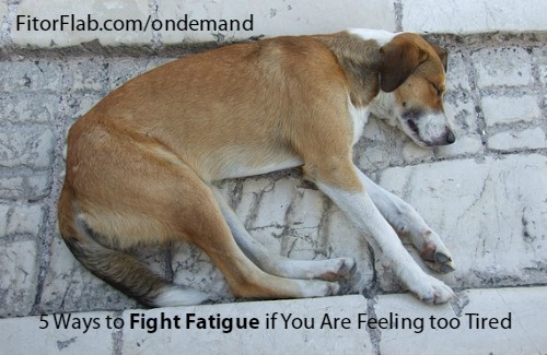 Ways to Fight Fatigue